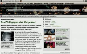 Webseite des Artikels